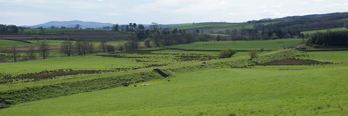 Lochanhead.jpg